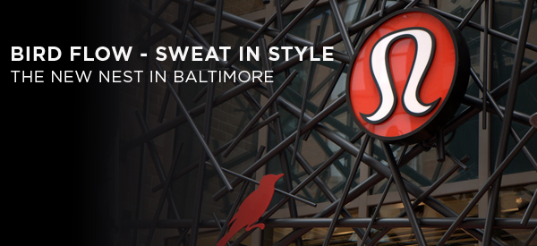 Bird Flow – Sweat In Style